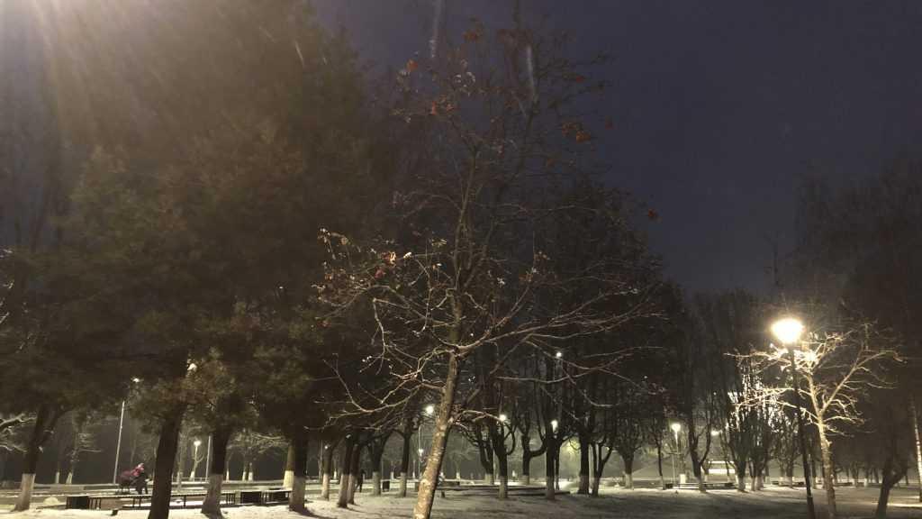 В Брянской области выпал первый снег
