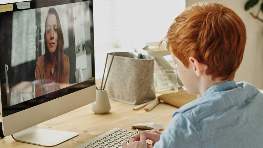 Брянец рассказал о преимуществах онлайн-нянь