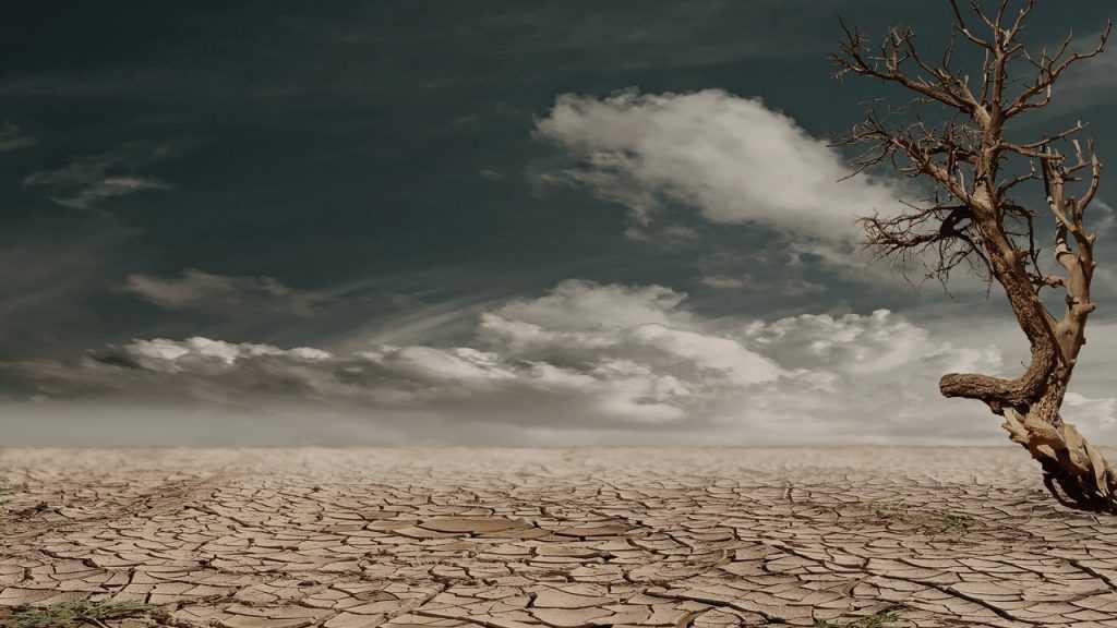 Катастрофу на Земле признали необратимой