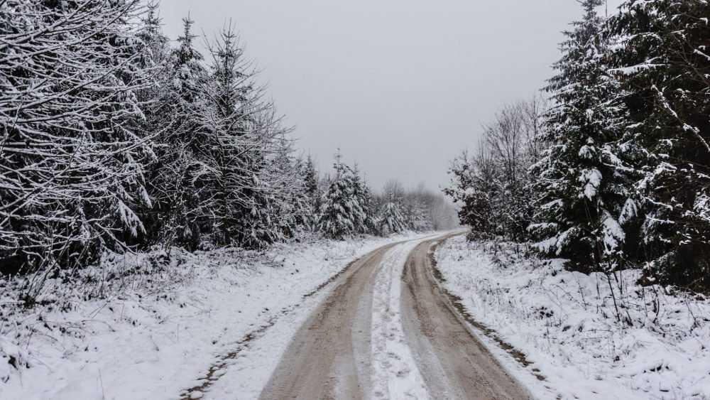 Жителям Брянской области 12 декабря пообещали снег и гололедицу
