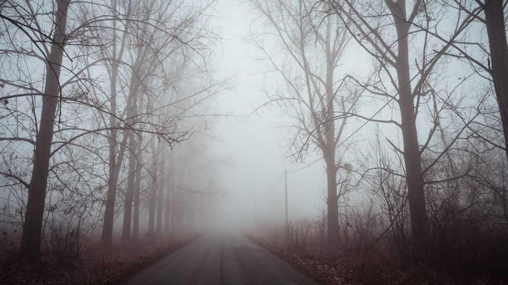 Брянских водителей предупредили о тумане и гололедице