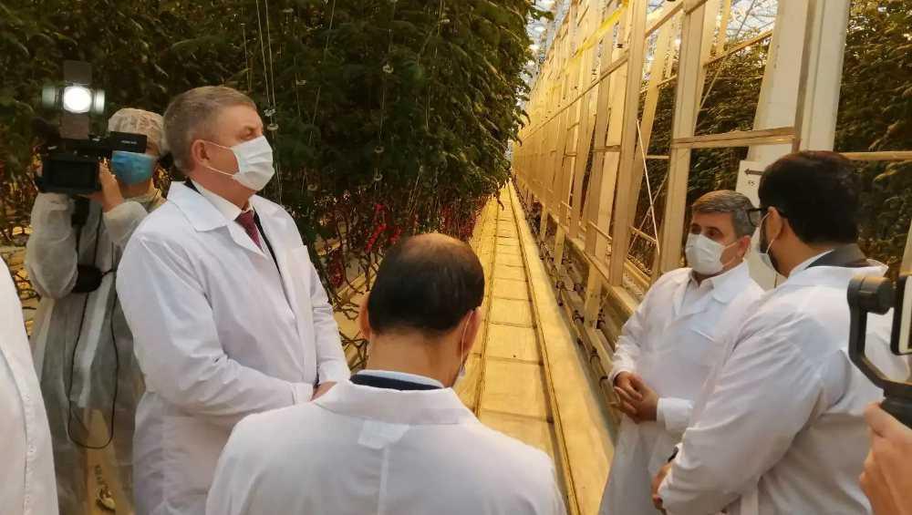 Посол ОАЭ осмотрел тепличным комбинат и школу под Брянском