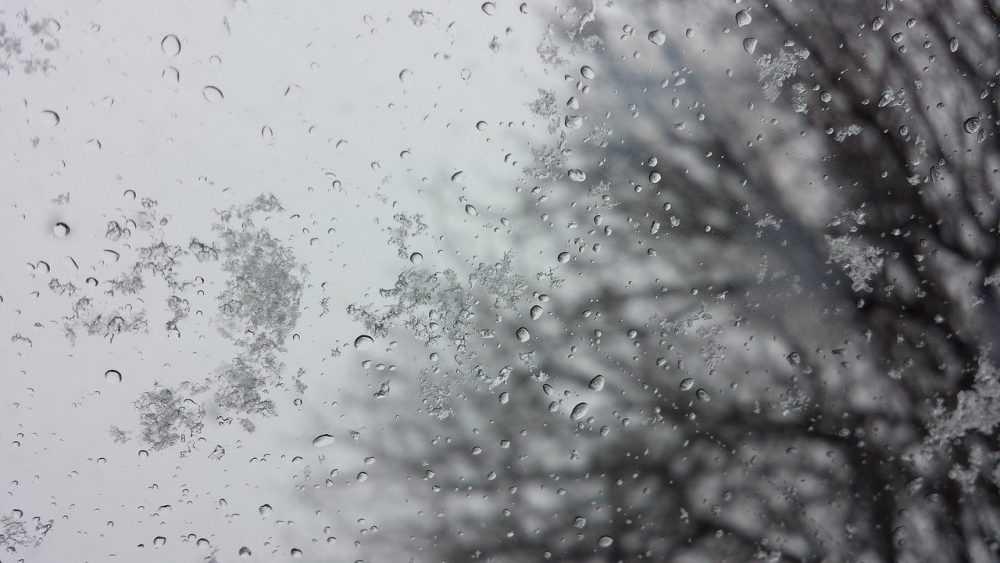 Брянщину накрыл мокрый снег