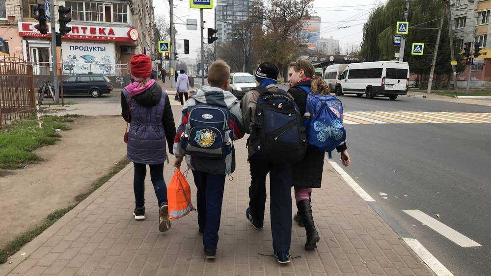 Отменят или нет дистанционное обучение в брянских школах 23 ноября?
