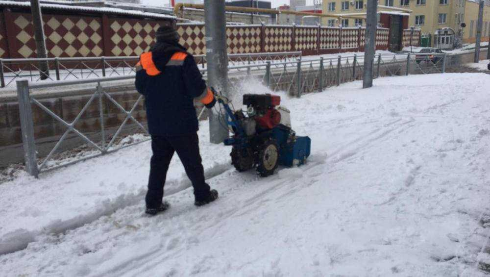 Брянские власти потребовали вывести дворников на уборку дворов от снега