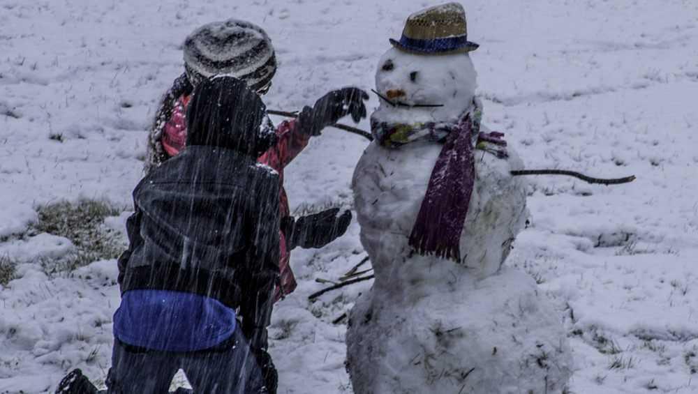 В воскресенье в Брянской области пойдет мокрый снег