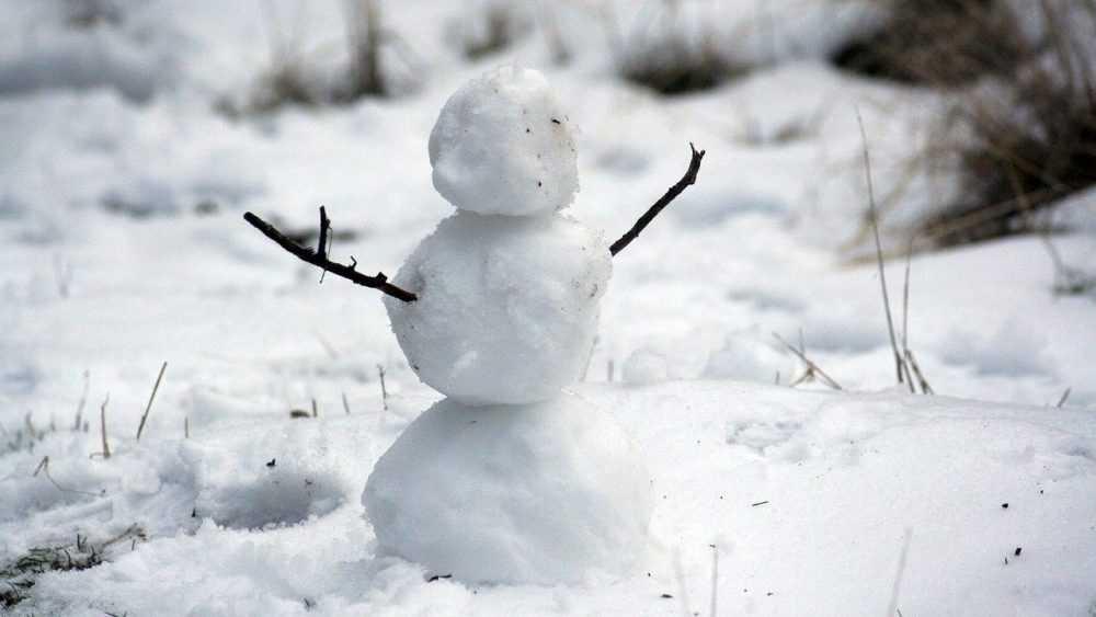 В Брянскую область придут морозы