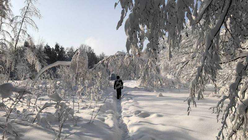 На Брянскую область надвигается снежный ужас