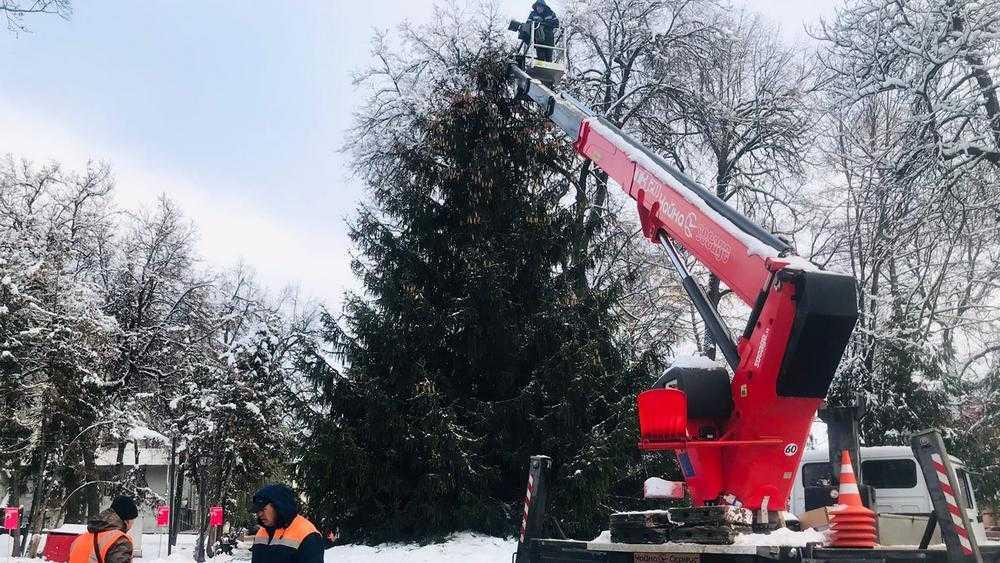 В Круглом сквере Брянска украсили главную ёлку города