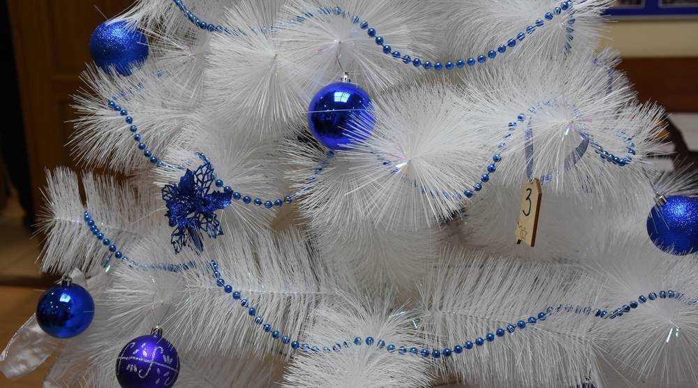 Брянские партийцы исполнят новогодние желания детей