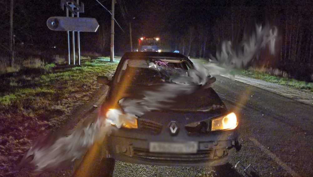 В Новозыбкове ради следственного эксперимента перекрыли дорогу