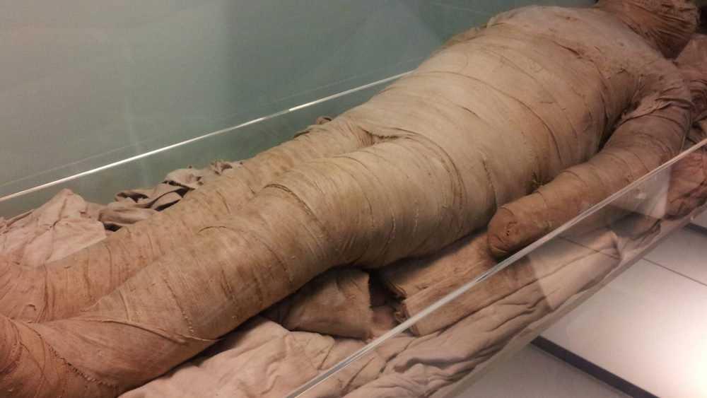 На свалке в Брянске обнаружено мумифицированное тело женщины