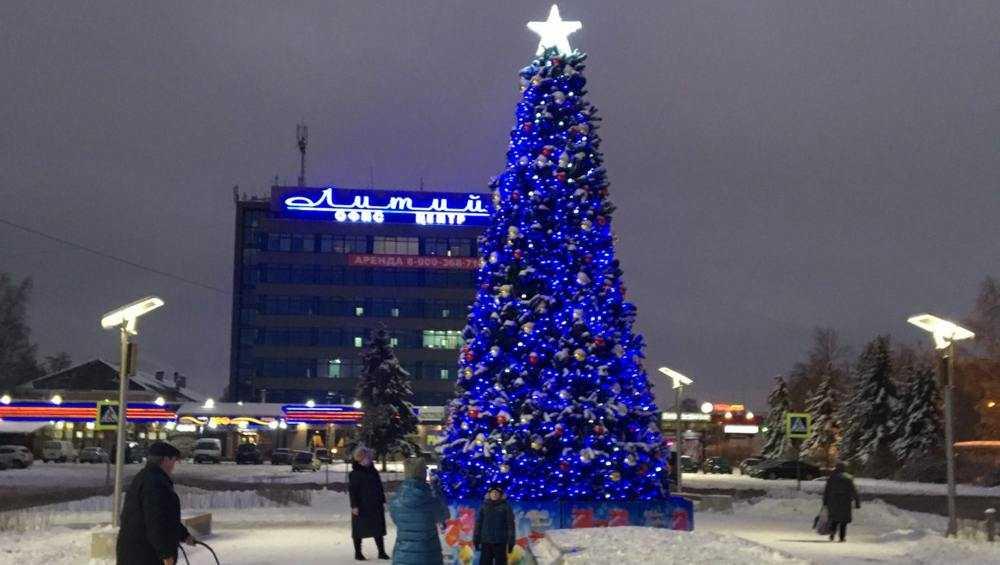 В новом брянском сквере «Литий» поставили искусственную 9-метровую елку