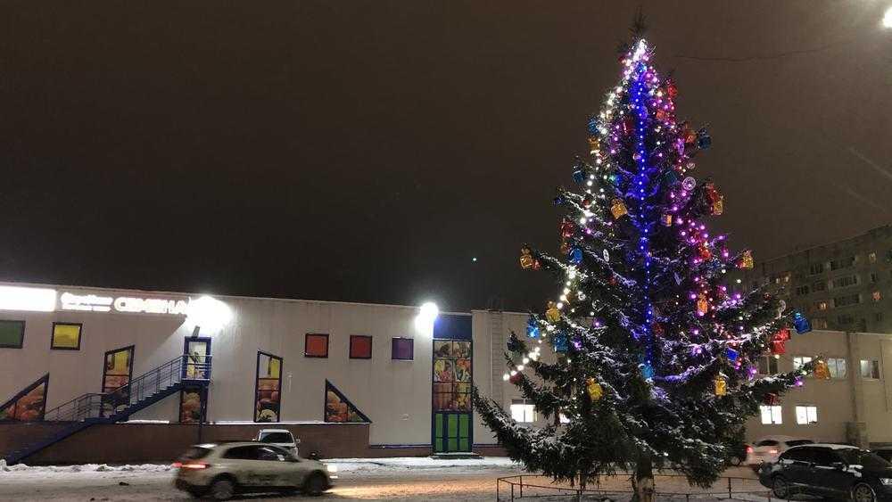 Жизнь кавказцев в Брянске под новогодней елочкой стала лучше и веселее