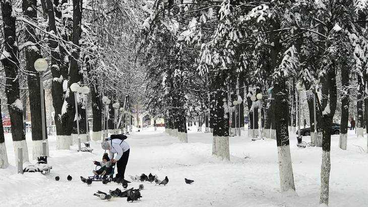 Вильфанд рассказал, какая погода будет в Брянске в новогоднюю ночь