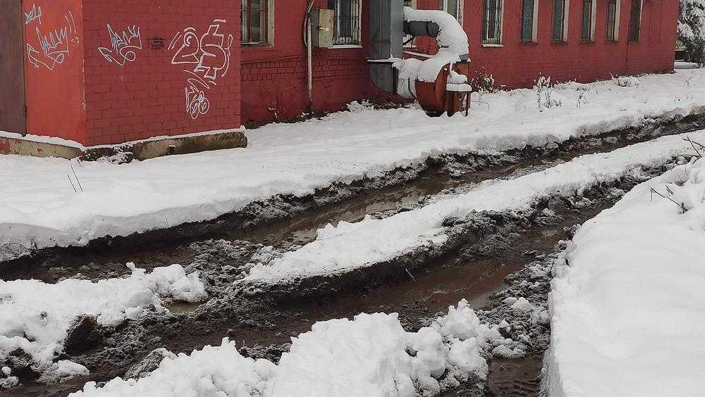 Житель Брянска обнаружил грязную загадку