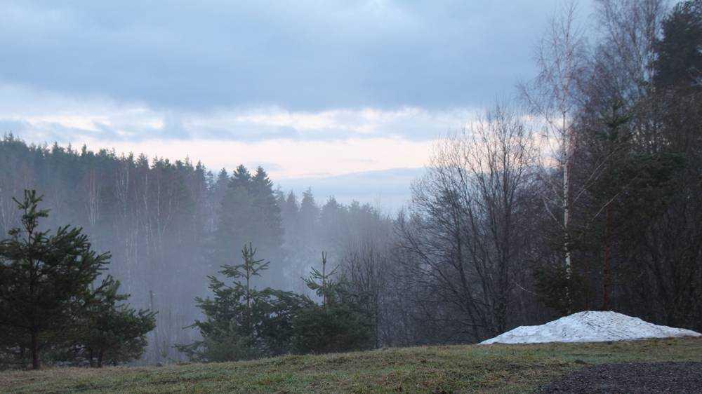 В Брянской области на следующей неделе потеплеет до 14 градусов