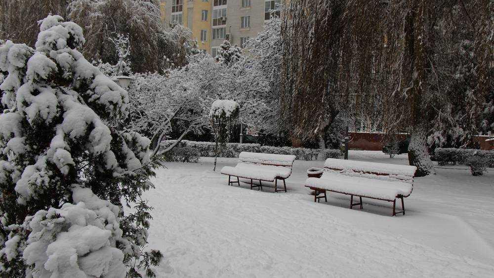 Брянской области 17 февраля пообещали снег и 18-градусный мороз