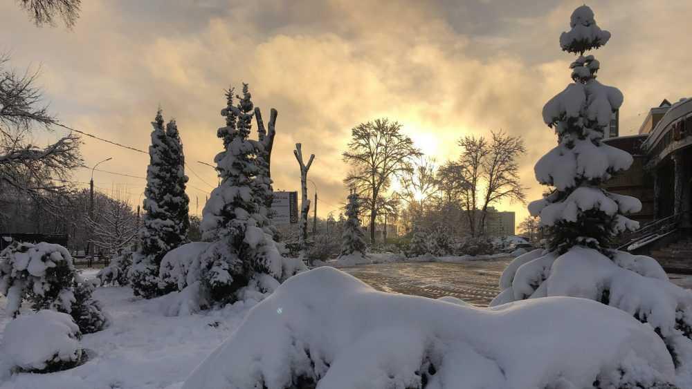 В Брянскую область придут серьезные морозы