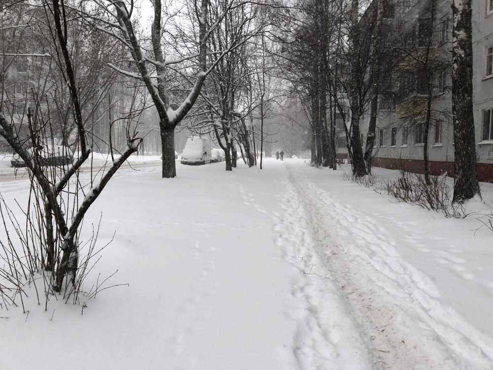 Брянскую область 10 февраля заметёт снегом