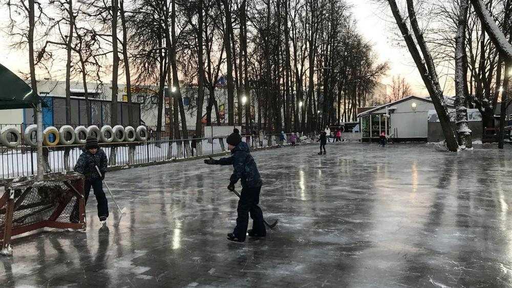 В Брянске подготовят 100 мест для зимних развлечений