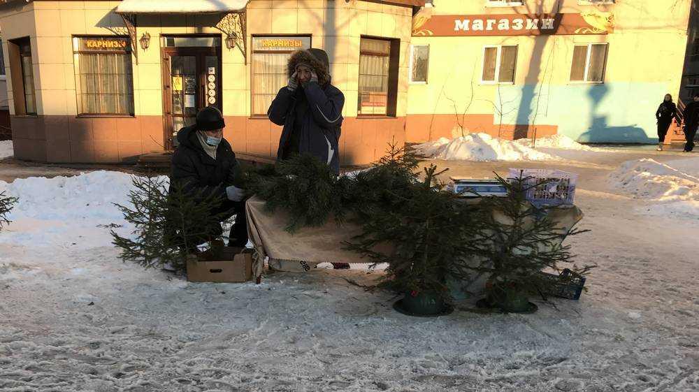 В Брянске часть елок не смогли продать