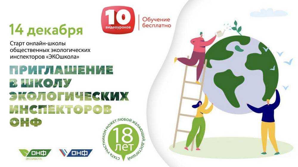 ОНФ открывает онлайн-школу общественных инспекторов