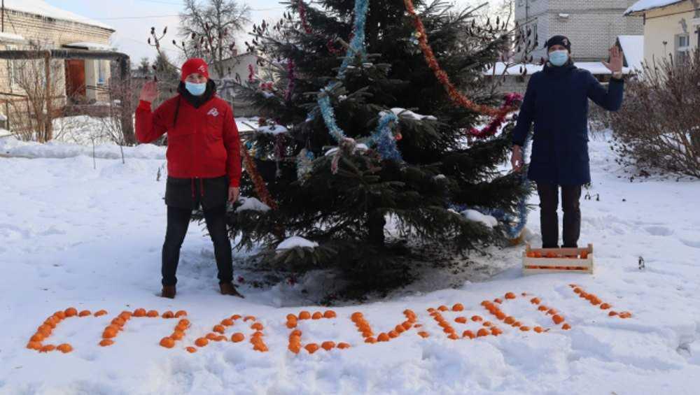 Брянских медиков поблагодарили мандаринами на снегу