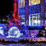 Жителей Брянска восхитила новогодняя сказка в центре города