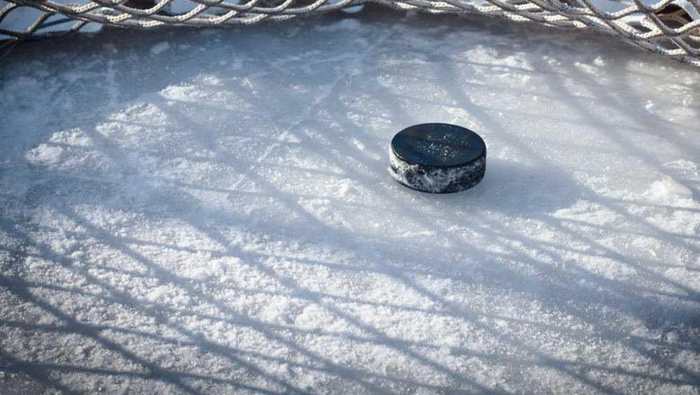 Брянские хоккеисты всухую проиграли череповецкому «Металлургу»