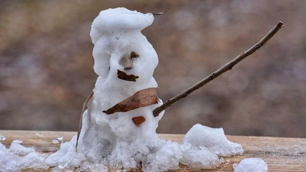 На Брянщине 4-градусный мороз сменится 2-градусным теплом