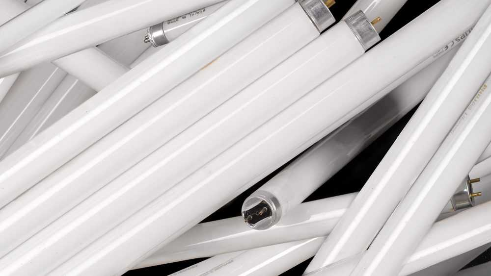 Прокуратура нашла в брянской школе опасные лампы