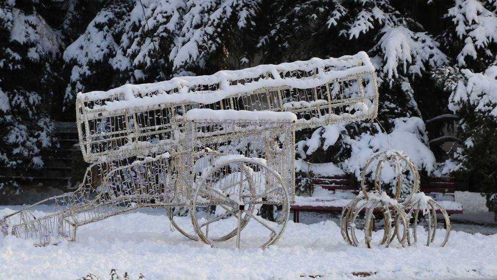 К середине декабря Брянск станет новогодним
