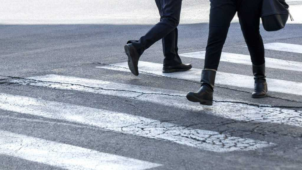 В Брянской области открыли охоту на пешеходов-нарушителей