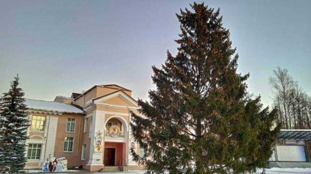 В брянском посёлке Белые Берега установили новогоднюю ёлку