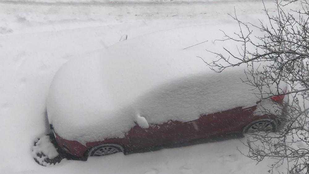 Жители тесных микрорайонов Брянска попали в снежный плен