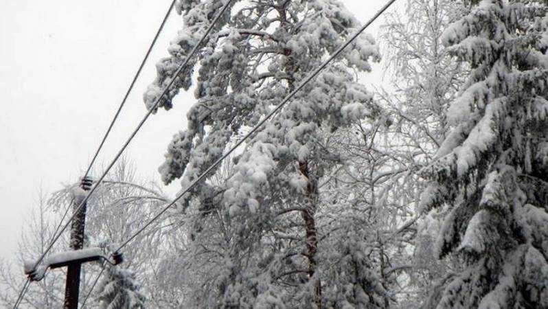 Энергетики филиала «Россети Центр Брянскэнерго»  переведены в режим повышенной готовности из-за непогоды