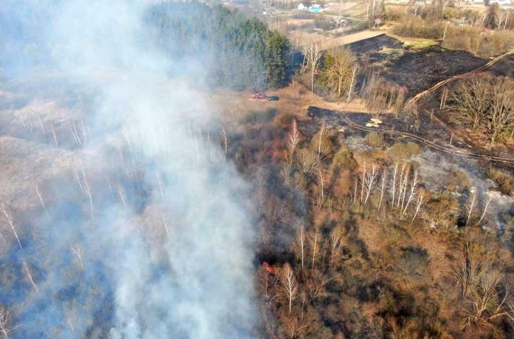 В брянских лесах до сентября ввели особый противопожарный режим