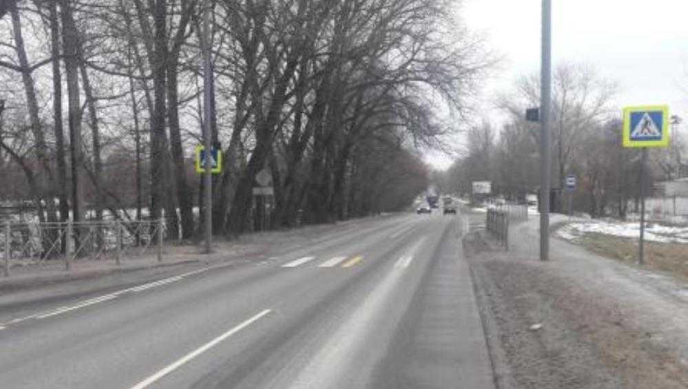 В Бежицком районе Брянске легковушки сбили двоих пешеходов