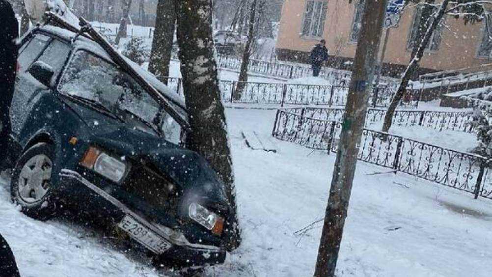 В Трубчевске Брянской области ВАЗ протаранил дерево