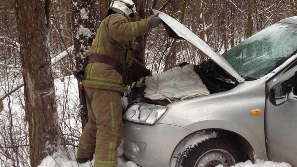 Под Суражом автомобилистка наехала на дерево и покалечила пассажирку