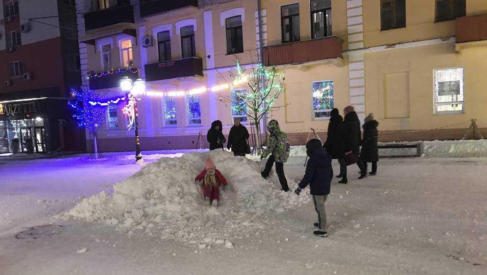 В Брянске детям нечаянно подарили горку на бульваре Гагарина