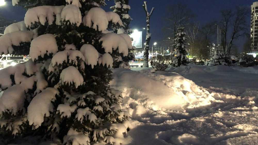 В Брянскую область придут аномальные морозы
