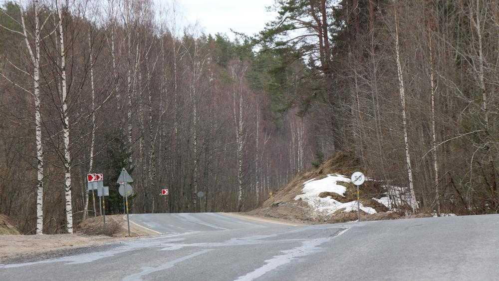 Брянские туристы в Карелии попали в серьёзное ДТП