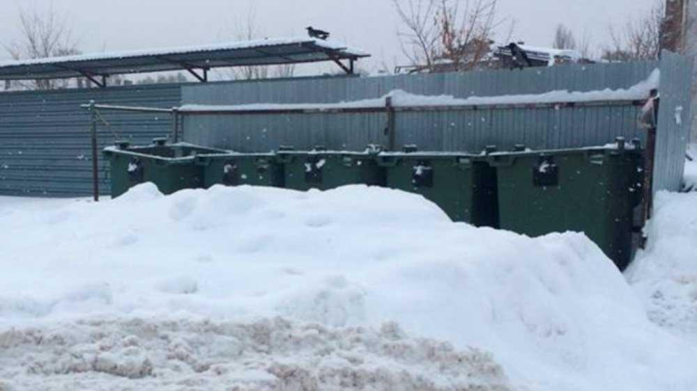 В Брянске из-за снегопада мусоровозы не смогли добраться до контейнеров
