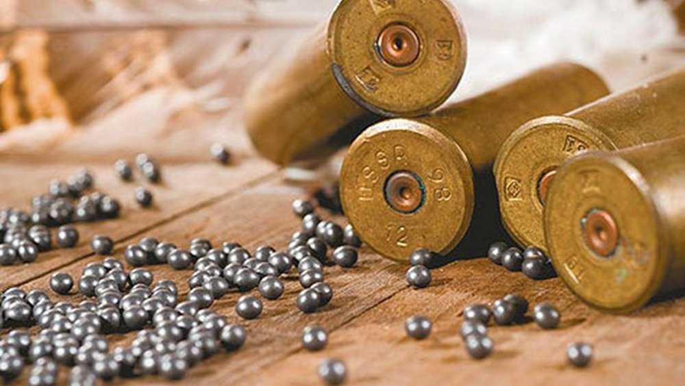 Укравшего телефон брянца уличили в сборе и хранении боеприпасов