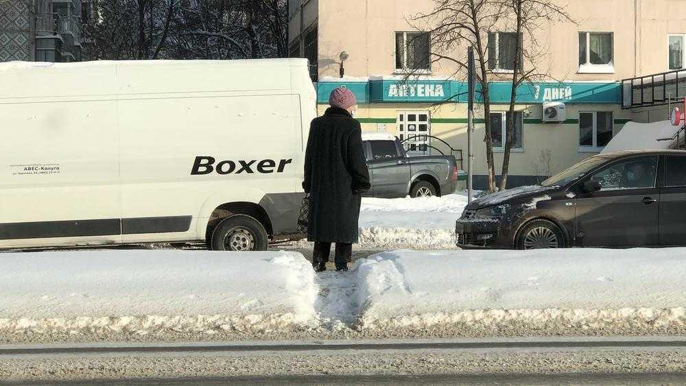 Отважные брянские пенсионерки из-за мороза и масок ринулись в бой