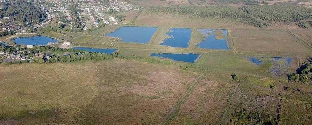 Брянцы призвали возродить уникальные пруды в Романовской усадьбе