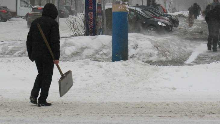 В Брянской области в четверг ожидается мокрый снег и 5 градусов мороза