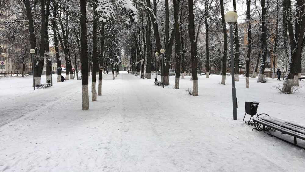 В Брянске увеличат территорию сквера Энергетиков